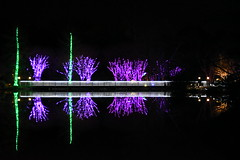 Lewis Ginter Christmas Lights 2017 (michael_orr25) Tags: nikond5500 christmas christmaslights lewisginter richmond virginia nightscape lights