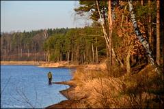 DSC_7056 (facebook.com/DorotaOstrowskaFoto) Tags: rejów skarżyskokamienna zalew zalewrejowski plaża drzewa woda świętokrzyskie poland spacer