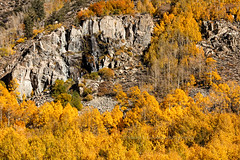 Unnamed Waterfall, Bishop Creek Canyon (chasingthelight10) Tags: events photography travel landscapes canyons creeks forests foliage nature mountains places california bishopcreekcanyon easternsierranevada sierranevada bishopcreek northlake sabrinalake southlake
