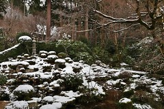 A little snow Ⅱ / Kyoto Ohara Sanzen-in Shuheki-en Garden (maco-nonch★R) Tags: kioto kyoto ohara sanzenin 京都 大原 三千院 三千院門跡 天台宗 庭園 garden garten winter snow snowy traditional old buddhism stones woods trees asia canon efm1122mmf456isstm 日本 jardín japonés jardin giardino