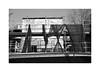 (billbostonmass) Tags: adox silvermax 100 film 129silvermax1100min68f nikon fm2n voigtlander 40mm ultron sl2 f2 epson v800 boston massachusetts chinatown