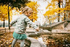 The time the last leaf fell. (icarium82) Tags: carlzeissplanar35mmf2 portrait child travel street water city park people face menschen reise strasse dresden brühlscheterrasse sonydscrx1rm2 sundaylights