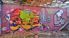 Graffitis, Bordeaux, Floirac (thierry llansades) Tags: floirac bordeaux graf graffs graffiti graffitis spray aerosol painting bombing mur 33 gironde dordogne aquitaine urbanart