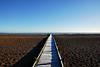 Lydd on Sea (richwat2011) Tags: octnovdec17 kent seaside sea englishchannel coast coastline shore shoreline lade lyddonsea southcoast romneymarsh beach shingle nikon d200 18200mmvr boardwalk frost