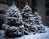 20180104-IMG_2546 (BumbyFoto) Tags: manhattan nyc newyorkcity newyorkstate city citylife citystreet cold coldtemperature frost polarclimate season snow street winter