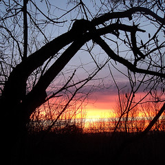Sunset On Bukulja1 (AleksandraMicic) Tags: