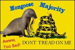 Mongoose Majority (FolsomNatural) Tags: mongoose majority donttreadonme flag satire spoof parody