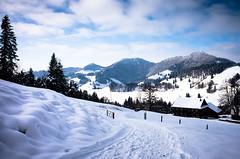 back to earth (gato-gato-gato) Tags: 28mm apsc alpen atzmaennig atzmännig berge oberland ricoh ricohgr schneeschuhe schneeschuhlaufen voralpen wandern wanderung winter zürcheroberland autofocus digital gatogatogato gatogatogatoch hiking mountaineering pointandshoot snapshot snowshoeing tobiasgaulkech wwwgatogatogatoch sanktgallenkappel sanktgallen schweiz ch switzerland suisse svizzera sviss zwitserland isviçre landschaft landscape landscapephotography outdoorphotography mountains mountain gebirge fels stein stone rock