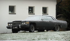 Rusty yank tank sits on grass on a frosty day - 1975 Cadillac DeVille (sms88aec) Tags: rusty yank tank sits grass frosty day 1975 cadillac deville
