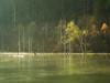Shizen-Ko Lake【Explore】 (chikuma_riv) Tags: japan nature landscape river lake mountain forest flower sunset sunrise spring summer autumn winter leaves