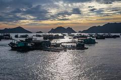 Rybářská zátoka (zcesty) Tags: vietnam17 skály moře loď vietnam catba dosvěta hảiphòng vn