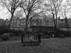 St George's Gardens Bloomsbury (IanAWood) Tags: stgeorgesgardens bloomsbury london lbofcamden urbanparks londonparksandgardens londonsburialgrounds nicholashawksmoor burialactsof1850 londondead cemeteryclub londoncemeteries oldgraveyards bringoutyourdead citiesofthedead necropolis androidphotography cameraphonephotographer mobilesnaps capturedonp9 huaweip9 editedinsnapseed seenonmytravels notwalkingwithmynikon