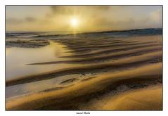 Lever de soleil sur la plage (Laurent Asselin) Tags: paysage plage soleil leverdesoleil sunrise lumière rayons aube sable guyane kourou