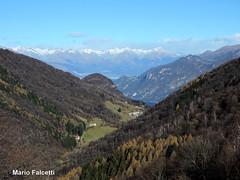 Italy: Lasnigo (Como): view from Monte Megna, with also Como Lake in background (mariofalcetti) Tags: italy italia lombardia megna montemegna lagocomo lake mountain trees landscape tree