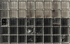 Glass Brick Wall (Alistair-Hamilton) Tags: glass broken cracked kirkcudbright wall