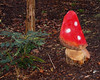 2017_12_0098 (petermit2) Tags: enchantedbrodsworth christmasilluminations brodsworthhall brodsworth doncaster southyorkshire yorkshire englishheritage garden gardens heritage heritagegarden flyagaric mushroom toadstool fungi fungus