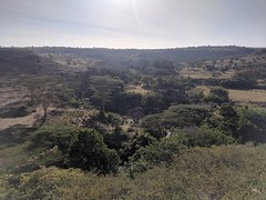 2017-12-28 16.50.23 (dcwpugh) Tags: travel nairobi kenya safari nairobinationalpark