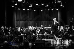 2017_01_07 Nieuwjaarsconcert St Antonius NJC_2882-Johan Horst-WEB