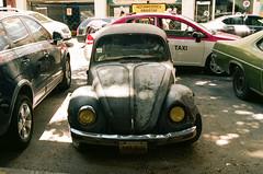 73290023 (alexdotbarber) Tags: 130 35mm beetle bug cdmx df kodakportra160 mexico mexicocity nikonfm3a slr vw voigtländerultron40mmf2slii analog colornegative f8 manualfocus