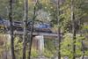 Crossing the New River (DFChurch) Tags: wv westvirginia train rail railroad csx newriver cunard