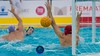 ATE_0511.jpg (ATELIER Photo.cat) Tags: 2017 action atelierphoto ball barcelona catalonia club cnmataroquadis cnrealcanoe competition dh game mataro match net nikon nikoneurope nikoneuropecompetition pallanuoto photo photographer playpool player polo pool professional sports vaterpolo wasserball water waterpolo wp wpm