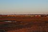 Off Roading (gpo321) Tags: sunrise goldenhour abseconbay acl njt njtransit atlanticcityline gamblersexpress meadow gp40ph2 emd atlanticcity commuter train railroad locomotive canon canonsl1 njtr4219
