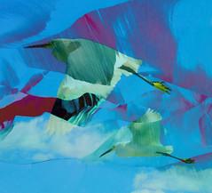 Two birds (ashokboghani) Tags: abstractart modernart digitalart digitalpainting