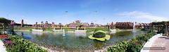 Panoramic Dubai Miracle Garden