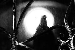 vergine del vetro/virgin of the glass (hydRometra) Tags: verginemaria iron cimitero ferro controluce vetro religione virginmary graveyard religion glass mentone bn france menton backlighting bw francia