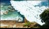 171202-4765-XM1.jpg (hopeless128) Tags: australia 2017 sydney bondi sea bondibeach newsouthwales au