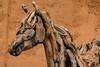 Driftwood Boy (teltone) Tags: sonyrx100iv sony street cornwall raw vacation holiday winter uk england aperturepriority fab scouser travel european