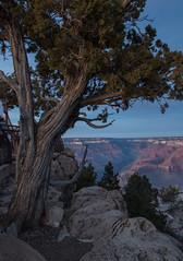 12-31-17MatherPt (1 of 1) (jul_gulia) Tags: grandcanyon arizona desert southwest usa travel vacation nature