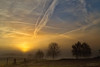 Sunrise and contrails (Rita Eberle-Wessner) Tags: landschaft landscape sonnenaufgang sunrise sonne sun baum tree weg path zaun fence himmel sky clouds wolken nebel fog orange contrails kondensstreifen morning morgen dawn morgendämmerung odenwald