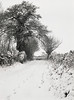 Snowy Lane 3 (V8 Badger) Tags: countryside english lane track snowy winter wintery icy frosty 400 xp2 ilford film 120 medium format selfix ensign folding