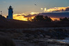Daybreak at Nobska Light (mhoffman1) Tags: buzzardsbay capecod eastcoast nobskapointlight nobsquelight sonyalpha sunrise woodshole a7riii coast dawn lighthouse winter