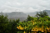 Mount Bromo, Indonesia (lvnmlr) Tags: bromo indonesia volcano