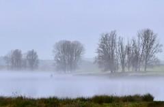 Taken at Elinor Lake, Titchmarsh Nature Reserve, Aldwincle, Northants. UK (Ian J Hicks) Tags: