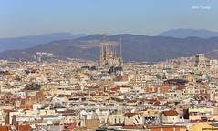Barcelona (Saul Tevelez) Tags: barcelona canon ef70200mmf28lisiiusm canoneos6d saultevelez catalunya cataluña catalonia españa spain paisaje landscape ciudad city montañas mountain