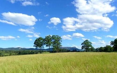475 Rosewood Road, Rosewood NSW 2446