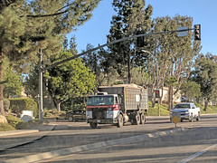Edco Roll Off Truck 12-21-17 (Photo Nut 2011) Tags: sanitation truck waste garbage trash refuse california junk edco rolloff sandiego ranchobernardo
