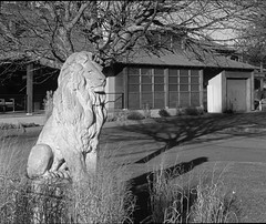 PC212857_01 (Paul Henegan) Tags: 67crop montaukny stonelioninn yule grass highlights monochrome morninglight shadows statue