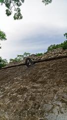 2017-12-07_12-02-52_ILCE-6500_DSC02845_DxO (miguel.discart) Tags: 2017 24mm archaeological archaeologicalsite archeologiquemaya coba createdbydxo dxo e1670mmf4zaoss editedphoto focallength24mm focallengthin35mmformat24mm holiday ilce6500 iso100 maya mexico mexique sony sonyilce6500 sonyilce6500e1670mmf4zaoss travel vacances voyage yucatecmayaarchaeologicalsite yucateque
