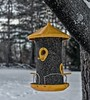 New Bird Feeder-HBW (☼It's Warming Up-Yay!!!☼) Tags: bokeh bokehwednesdays bokehwednesday2 birdfeeder metal cylinder yellow mesh food seed bird hanging tree maple snow backyard