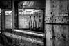 Vestiges de ripailles.../ Remnants of feasting... (vedebe) Tags: noiretblanc netb nb bw monochrome abandonné maisonabandonnée decay urbain urbex rue street ville city port ports sète urban fenêtre fête