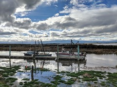 Soaking Wet (tourtrophy) Tags: alviso southbayyachtclub boats fishingboats alvisomarinacountypark southbay sanfranciscosouthbay swamp marsh marshland sanjose googlepixel2xl