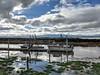 Soaking Wet (tourtrophy) Tags: alviso southbayyachtclub boats fishingboats alvisomarinacountypark southbay sanfranciscosouthbay swamp marsh marshland sanjose googlepixel2xl