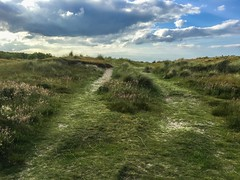 Track across the dunes (Just landscapes) Tags: shore hills walk countryside country rural beach grass uk natur nature natural paysage landscape seascape cost coastline seashore sand dunes