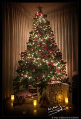 Noche de Reyes (2018) (Ismael Jorda) Tags: christmas tree winter holidays light gifts navidad arbol nochedereyes