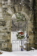 Christmas Gate (TAC.Photography) Tags: arch archopening wroughtiron fence gate wreath redbow christmas cemetery tomclarkphotographycom tacphotography tomclark d7100