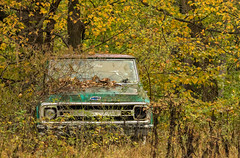 Chevy truck..... (Kevin Povenz Thanks for all the views and comments) Tags: 2017 november kevinpovenz westmichigan michigan truck rust auto automobile trees autumn fall canon7dmarkii tree leaves